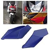 Motorcycle Winglet, Universal Motorcycle
