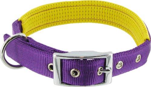 Kakadu Pet Orbit Padded Nylon Dog Collar, 1-Inch by 20-Inch, Purple with Yellow Trim, My Pet Supplies