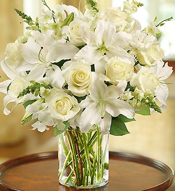 Amazon classic all white arrangement for sympathy large by 1 classic all white arrangement for sympathy large by 1 800 flowers mightylinksfo