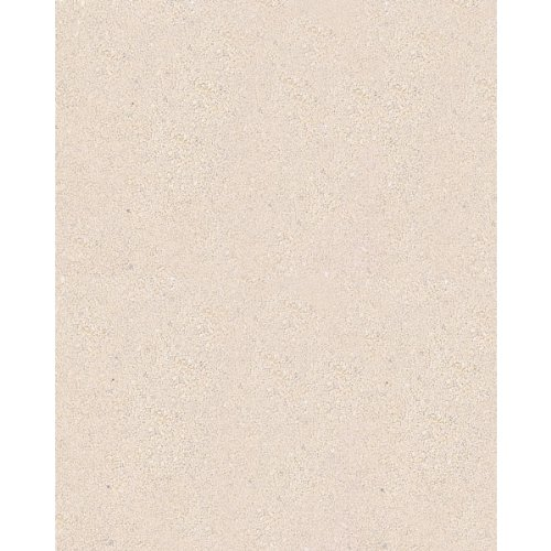 Carib Sea Reptilite Sand in Natural White (40 lbs) [Set of 2] by Carib Sea
