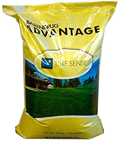 Amazon.com : 50 lb. Panterra V OverSeeding Rye Grass Lawn Seed High ...