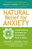 img - for Natural Relief for Anxiety: Complementary Strategies for Easing Fear, Panic, and Worry by Edmund Bourne PhD (2004-08-01) book / textbook / text book