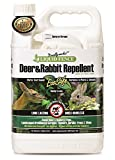Liquid Fence Deer and Rabbit Repellent, Ready-to-Use, 1-Gallon