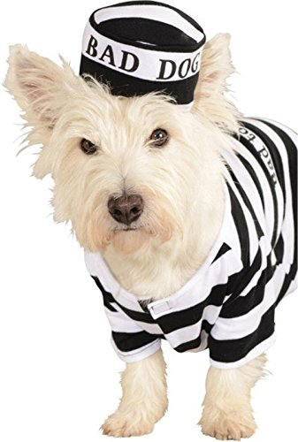 Prisoner Dog Pet Costumes (Rubie's Pet Costume, Prisoner, Large)