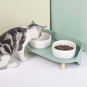 Elevated Cat Bowls, Double Food and Water Dog Raised Bowls with Stand, Ceramics Cat Dog Bowl with No-Spill Design, Feeder Bowls Dogs Cats and Pets, Anti Vomiting Pet Bowls (Green)