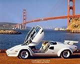 White Lamborghini - Doors Open 8 x 10 Transportation Art Print Poster