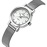 Wwoor Brand Fashion Women's Stainless Steel Quartz Watches Ladies Mesh Band Wrist Watch WR-8823 (silver)