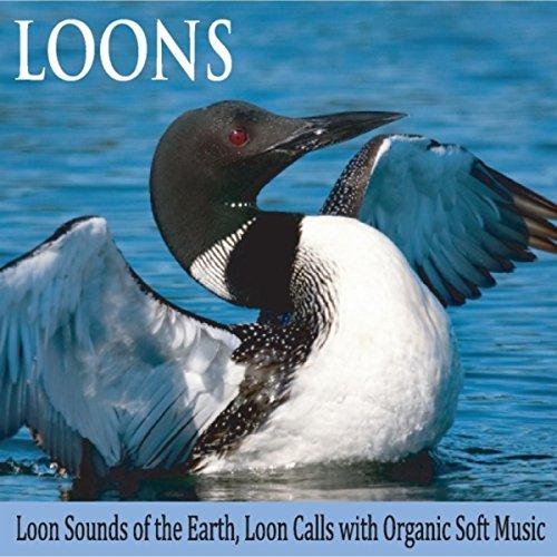 Amazon.com: Ocean Loons: Robbins Island Music Group: MP3