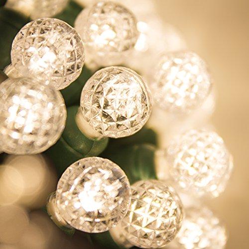 G12 Led Light Strings - G12 LED Razzberry Warm White Prelamped Light Set, Green Wire - 70 G12 Warm White LED String Lights, 4