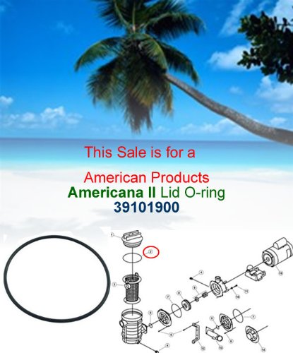 Pentair American O-ring (Pentair American Products O-Ring, Maxim, Americana II, Trap Lid, O-19 #39101900)
