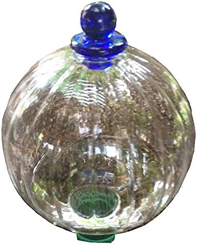 Glass Globe with Blumat Bottle Adapter Automatic Watering for Plants