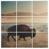 9-Piece Southwest Bison Mural on Wood, 60'' x 60''