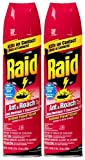 Raid Ant & Roach Killer Insecticide Spray-Outdoor Fresh - 17.5 oz - 2 pk