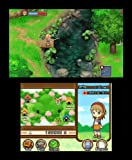 Harvest Moon: Tale of Two Towns - Nintendo 3DS