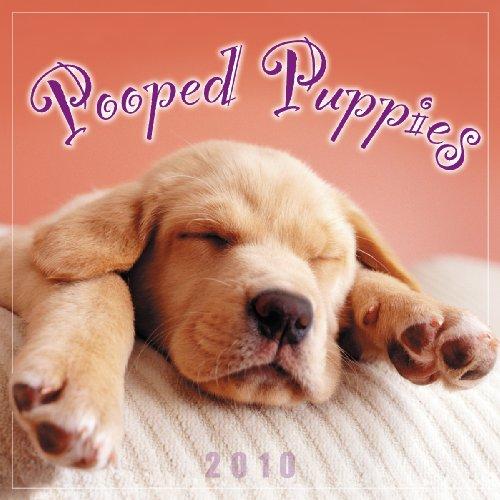 Pooped Puppies 2010 Mini Wall Calendar (Calendar) Dog 2010 Mini Calendar