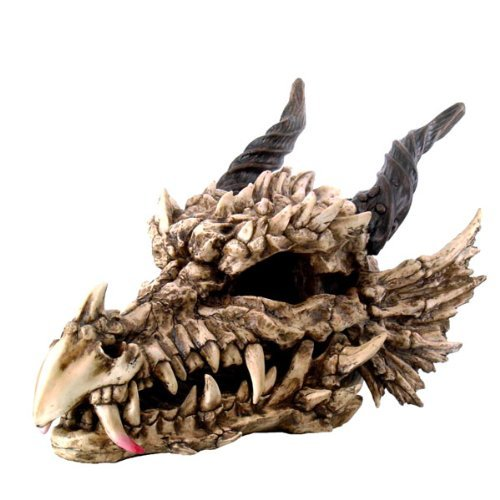 Large Dragon Skull Resin and Hand Painted Statue