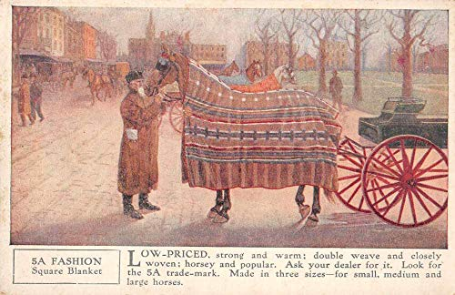 5A Horse Blankets Advertising Carriage Vintage Postcard JF235091