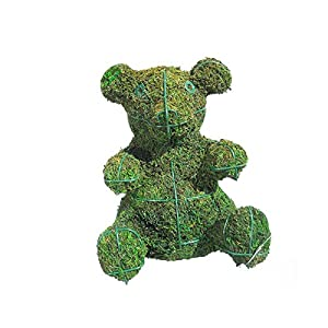 "Baby Bear Mossed Topiary 9""H 3"