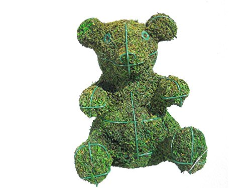 Baby-Bear-Mossed-Topiary-9H