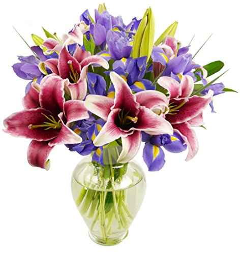 Benchmark Bouquets Stargazer Lilies and Iris, With Vase