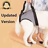 CatYou Dog Lift Support Rehabilitation Harness - Soft Front & Rear Lift Harness for Older, Arthritis or Weak Joints Dogs (Gray, Medium, for Rear Legs)