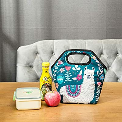 Noeoprene Lunch Bags Reusable Insulated Tote Llama Lunchbox Thermal Gourmet for Women Men Adults Kids Zipper Closure Alpaca: Kitchen & Dining