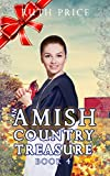 NEW RELEASE - An Amish Country Treasure 4