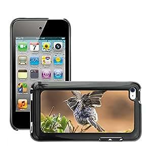 Etui Housse Coque de Protection Cover Rigide pour // M00151965 Pájaro Animal Aviator verano Naturaleza // Apple ipod Touch 4 4G 4th