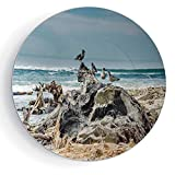 iPrint 8'' Ceramic Decorative Plate Driftwood Decor A Raft of Driftwood on The Shore Seagulls Wavy Sea and The Sky Digital Image