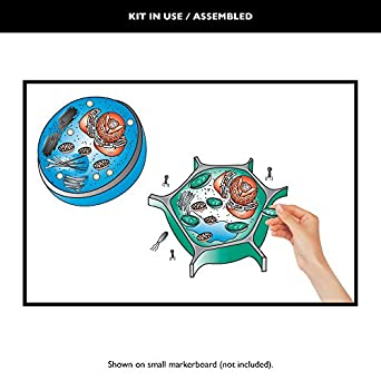 Speak Easies Cell Desk Kit: Amazon.com: Industrial & Scientific