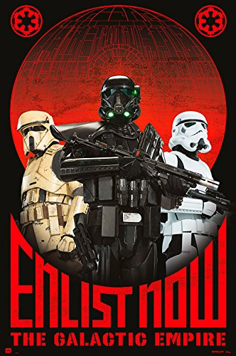 Grupo Erik editores Rogue One Enlist Now–Mini Poster, 40x 50cm ()