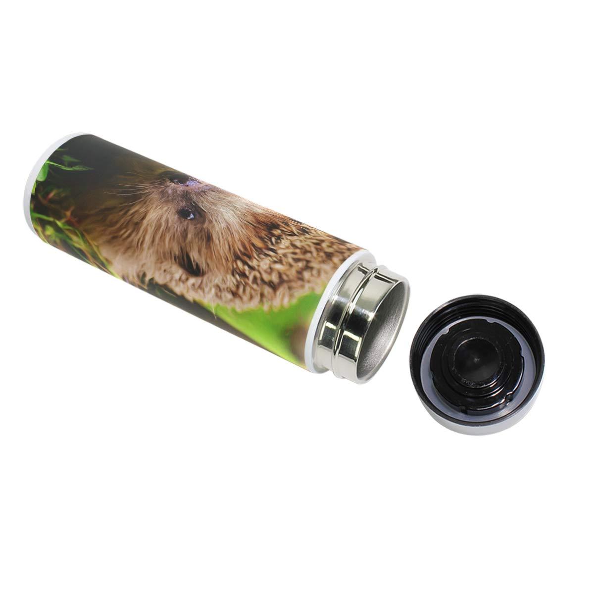 MUOOUM - Taza de de Taza viaje de acero inoxidable con aislamiento al vacío para bosque y erizo, botella de agua para deportes de 12 horas 1dd59e