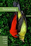 img - for Streaming book / textbook / text book