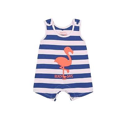 boboli Pelele Punto listado de bebé niña Modelo 117032 (12M): Amazon ...