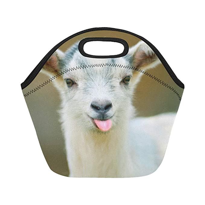InterestPrint Lunch Bags Funny Goat Lunch Bag Lunch Box Lunch Tote For Adult Teens Men Women