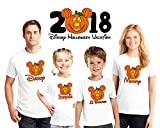 Halloween Disney Vacation family matching shirts, Halloween Family vacation Disney shirts, Personalized matching Disney Shirts for Family, not so scary Halloween matching shirts