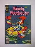 Woody Woodpecker Comic Book No. 178, May 1979
