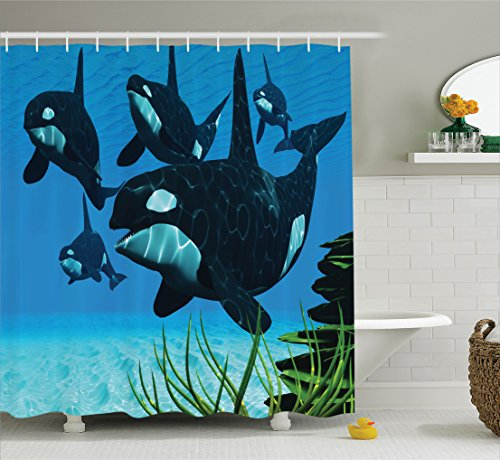 (Ambesonne Whale Decor Collection, A Pod of Killer Whales Swim Along a Reef Looking for Fish Prey in Ocean Picture Print, Polyester Fabric Bathroom Shower Curtain Set with Hooks, Blue)