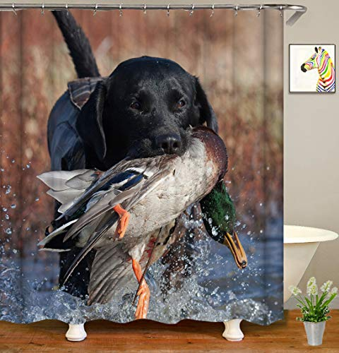 Funny Hunting Dog - YUYASM Funny Animal Shower Curtain Decor,Black Dog Hunting Duck in River Fabric Bathroom Curtains,Waterproof Polyester Bath Curtain Set with Hooks 70x70 Inch
