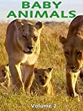 Baby Animals: Volume 2