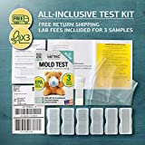 Mold Test Kit for Home - All-Inclusive Detection
