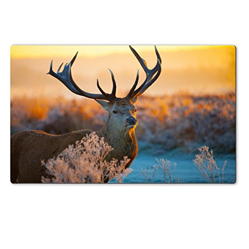 Large Table Mats red deer stock image Image 36361410 by MSD Customized Large Tablemats Stain Resistance Collector Kit Kitchen Table Top DeskDrink Customized Stain Resistance Collector Kit Kitchen Table Top Desk