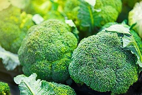 """Brócoli """"Calabrese Natalino"""" - semilla"""