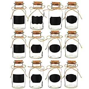 51xSSI8O-qL._SS300_ 50+ Best Glass Bottles With Cork Toppers
