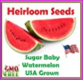 Package of 105 Seeds, Sugar Baby Watermelon Non GMO Seeds-USA grown-USA seller