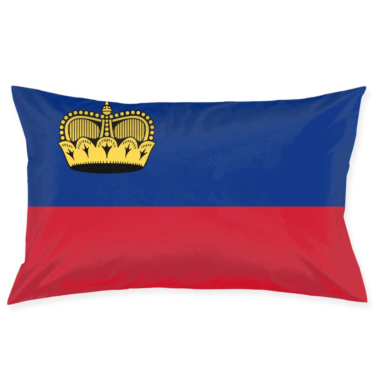 Amazon.com: Liechtenstein Flag Gift Throw Pillow Case Home ...