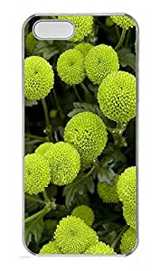 iPhone 5 5S Case Nature 2 PC Custom iPhone 5 5S Case Cover Transparent