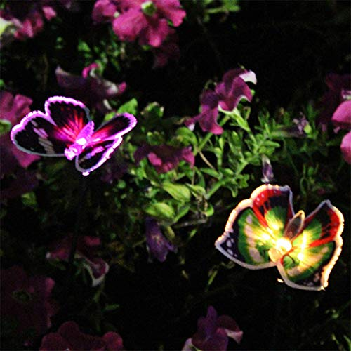 - Gotian Butterfly Solar Power LED Light Outdoor Garden Lawn Lamp Decor Fairy Light, Butterfly Flies in Your Garden, Give You a Nice Night View, for Villas, Courtyards, Lawns, Landscape (Purple)