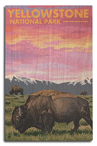 Lantern Press Yellowstone National Park, Wyoming - Bison and Sunset (10x15 Wood Wall Sign, Wall Decor Ready to Hang)