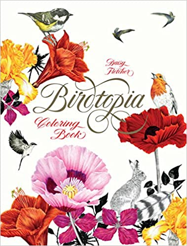Amazon Birdtopia Coloring Book 9781780677552 Daisy Fletcher Books